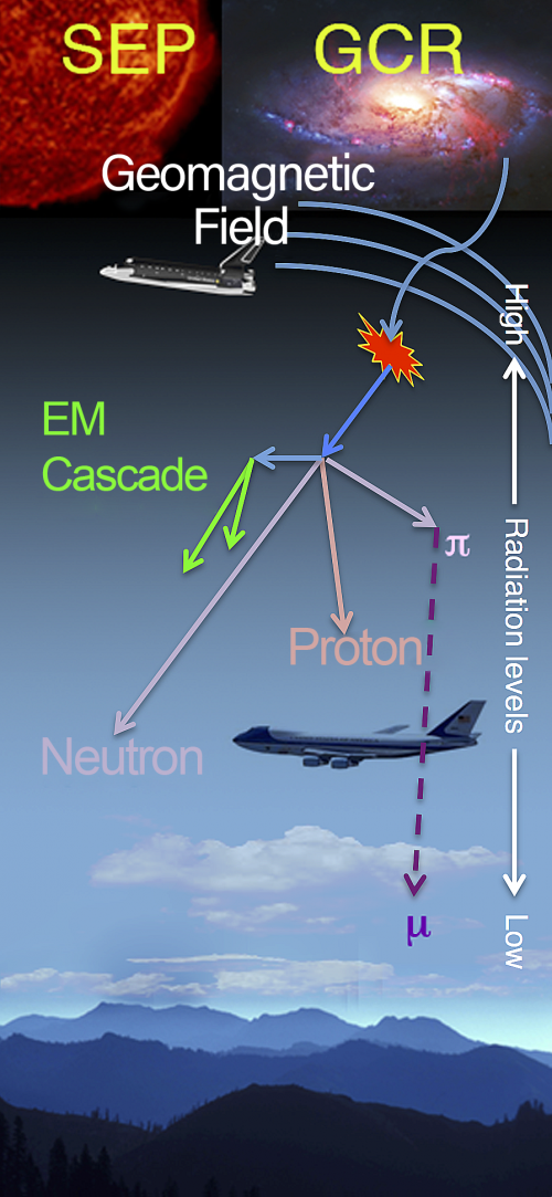 Aviation radiation environment